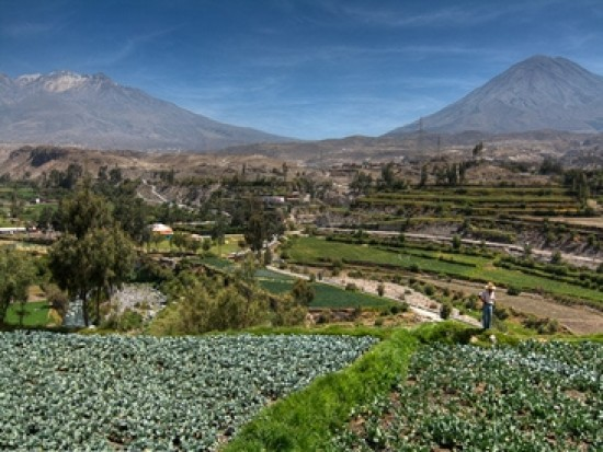 Circuit Pérou Arequipa Ville Blanche