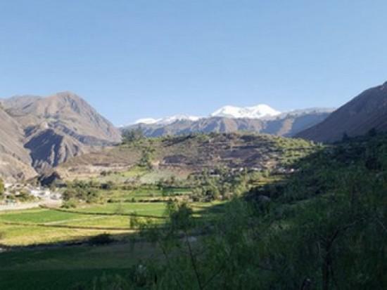 Circuit Pérou Volcan Coropuna