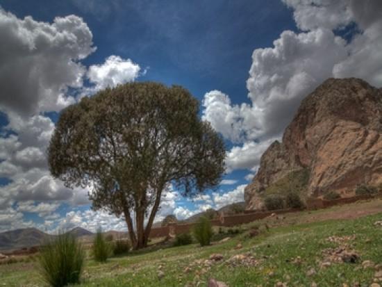 Circuit Pérou Route du Dieu Soleil Puno Cusco
