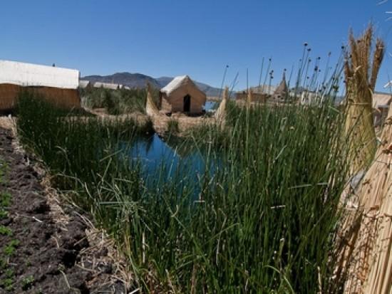 Circuit Pérou Uros Lac Titicaca Puno